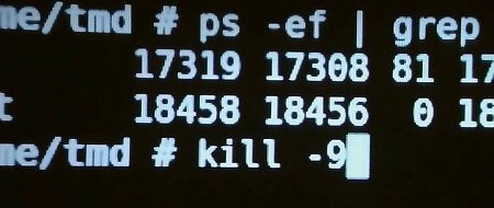 Using kill -9 as the superuser on UNIX.