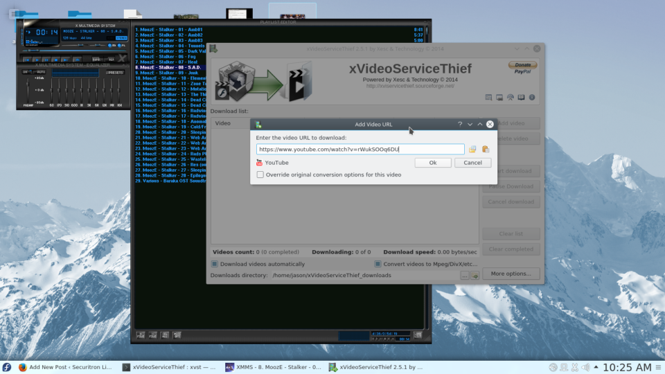xVideoServiceThief ready to download a Youtube video.