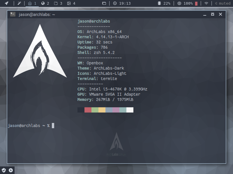 Arch Labs terminal app with some nice information displayed.